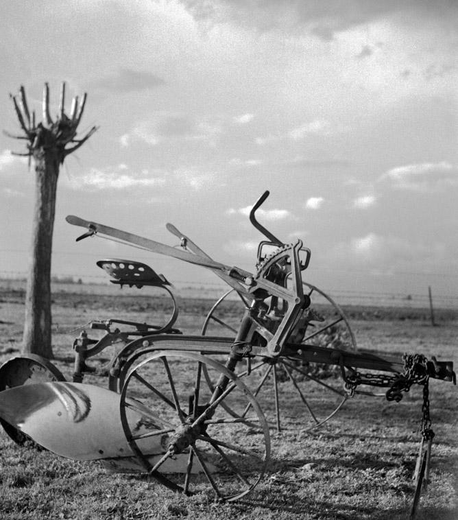 Esqueleto - 1949