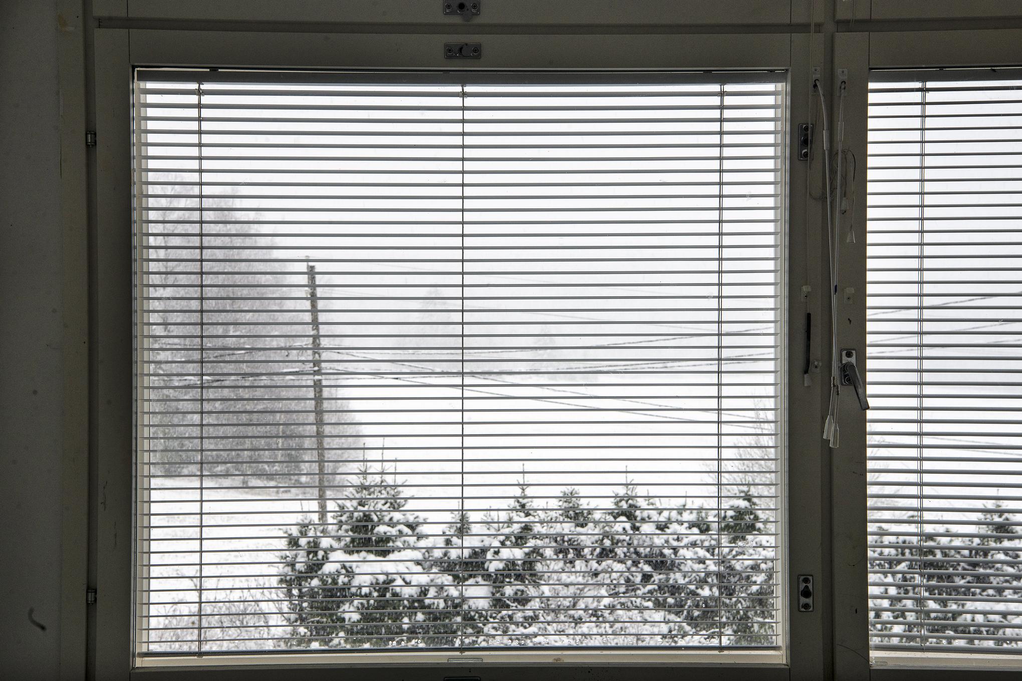 Through The Window 2